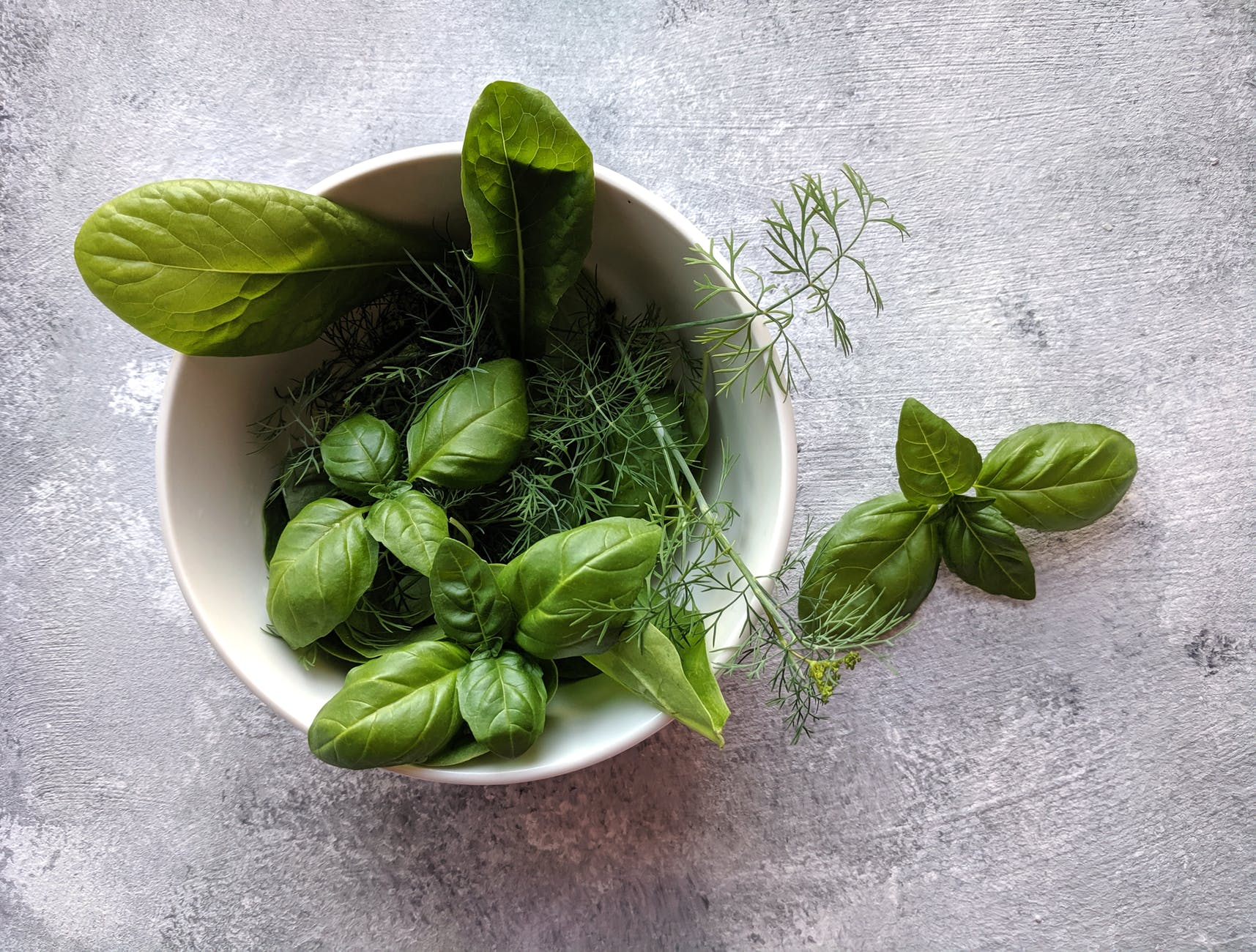 Tulsi Health Benefits: THESE are the health benefits of holy basil
