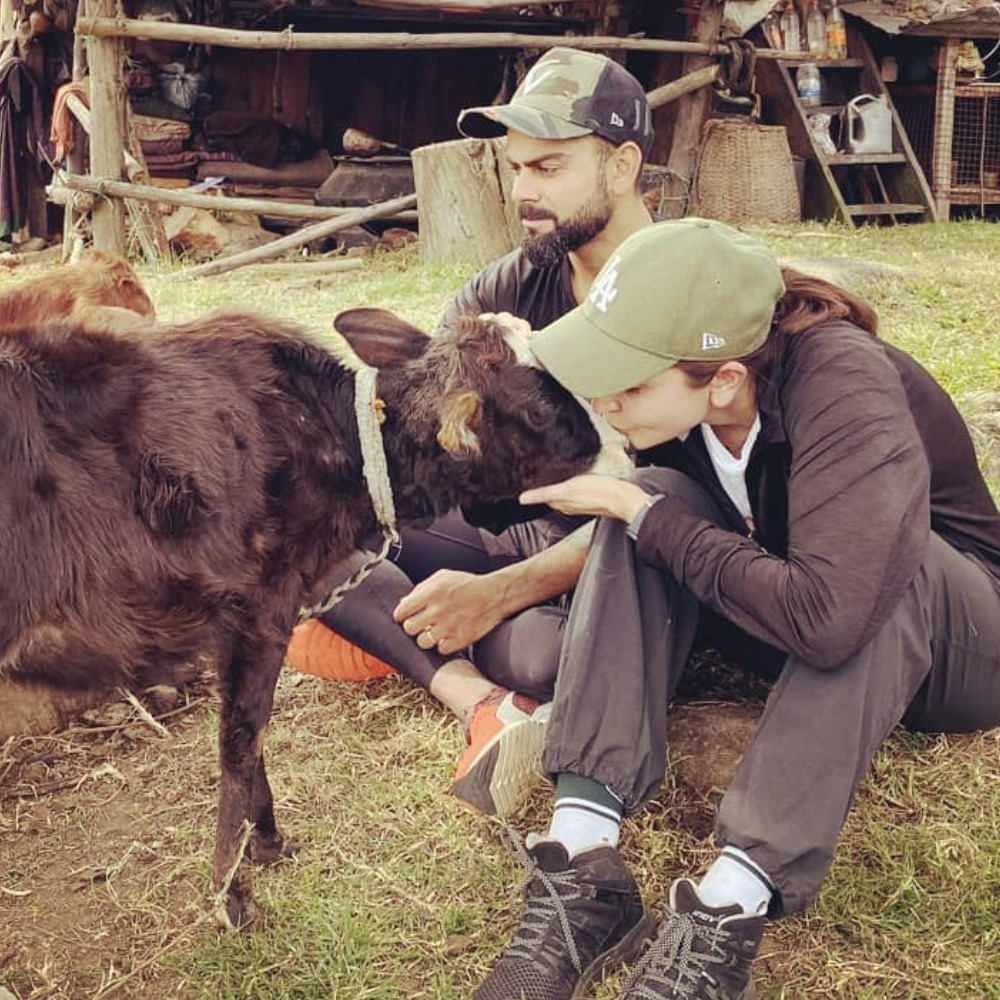 Anushka Sharma, Virat Kohli spend quality time with furry animals in Bhutan and it's all things cute; See Pics